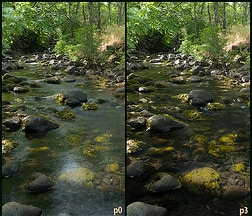 Polarized lenses reduce glare from water while you are fishing.