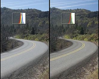 Polarized lenses reduce glare